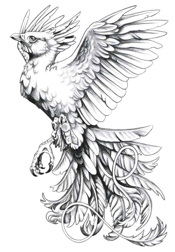 600x864 Collection Of Birds N Strawberry Head Tattoo Design