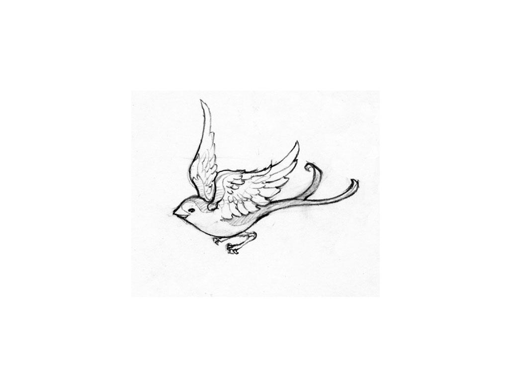 1024x768 Simple Swallow Tattoo