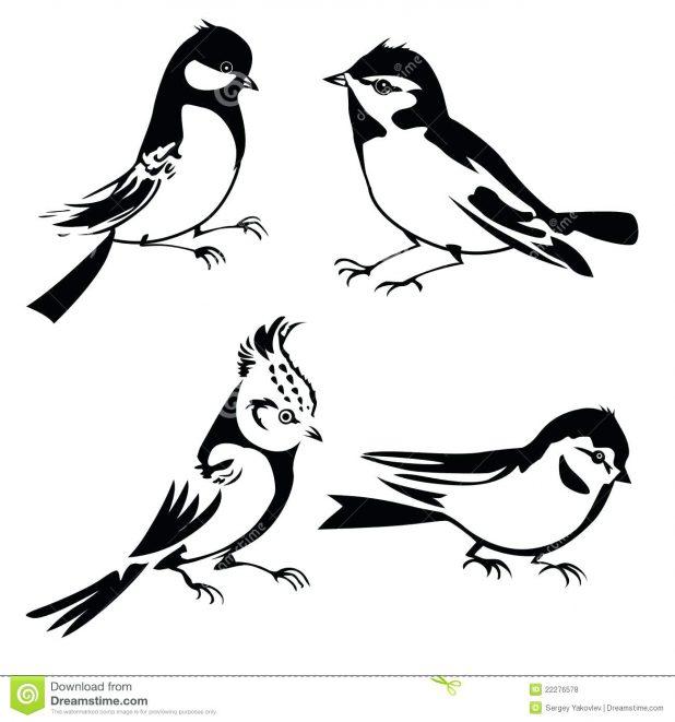 618x661 Bird Silhouette Captain Jack Sparrow Tattoo Designs Sketch