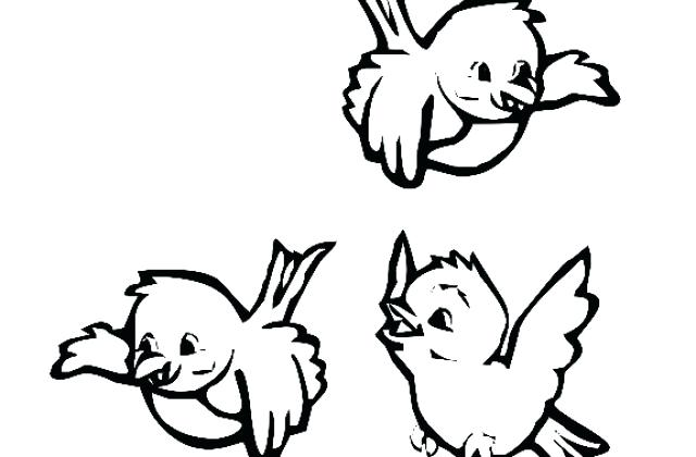 640x420 Coloring Pictures Of Birds Flying Cute Bird Illustration Drawing