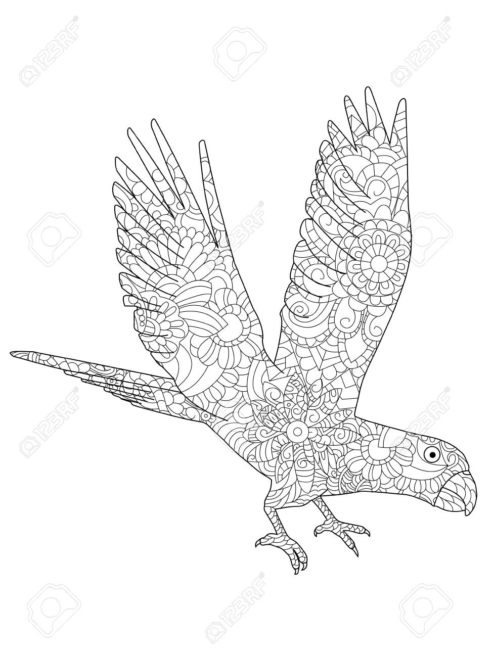 975x1300 Vector Illustration Of A Parrot Ara Flying Coloring Book Royalty