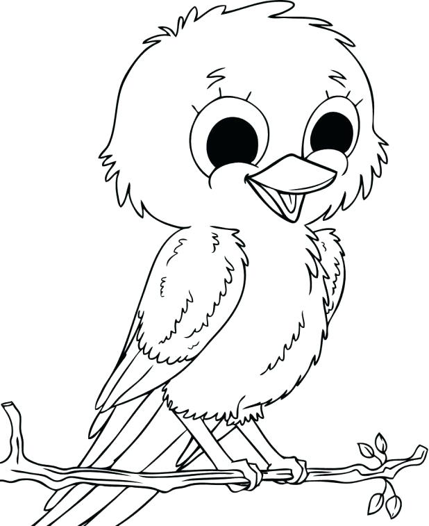 618x757 Coloring Pages Birds Baby Sparrow Birds Coloring Pages Bird Robin