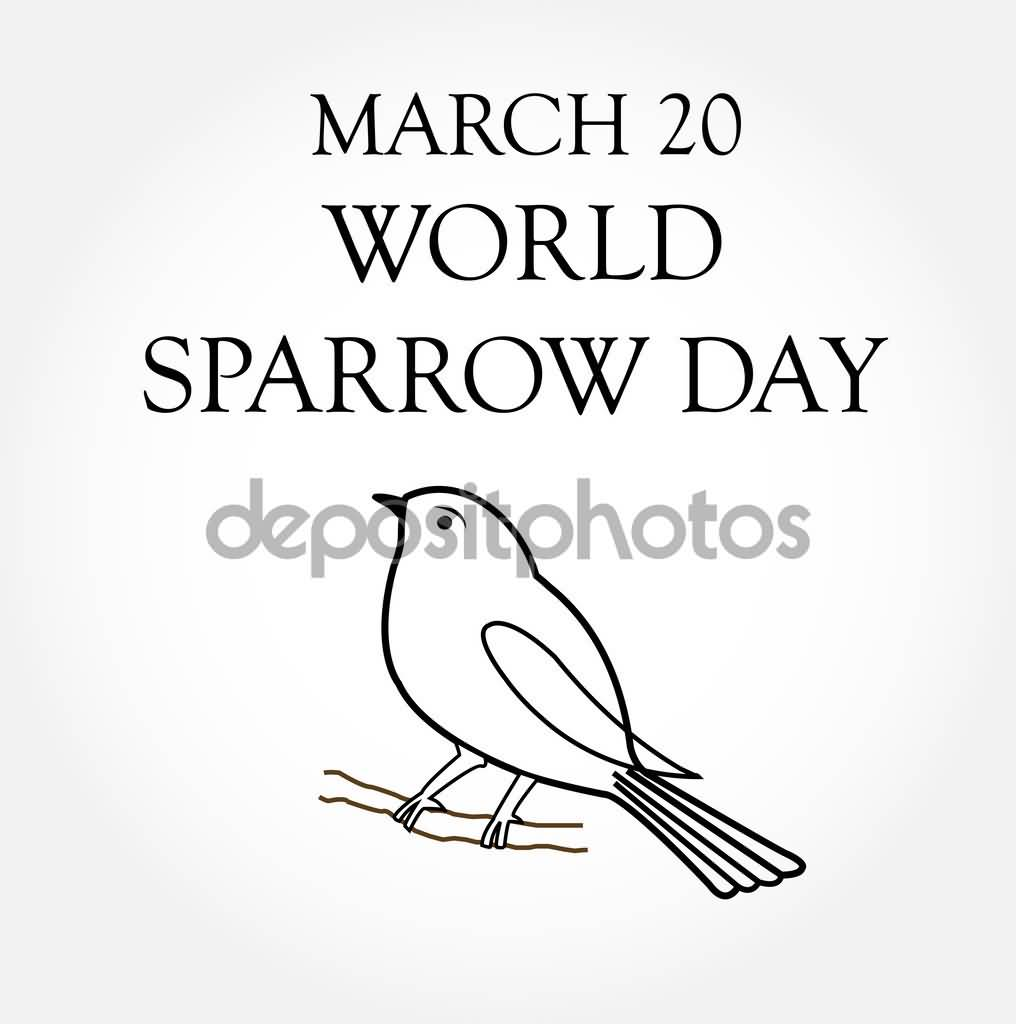 1016x1024 March 20 World Sparrow Day Coloring Page