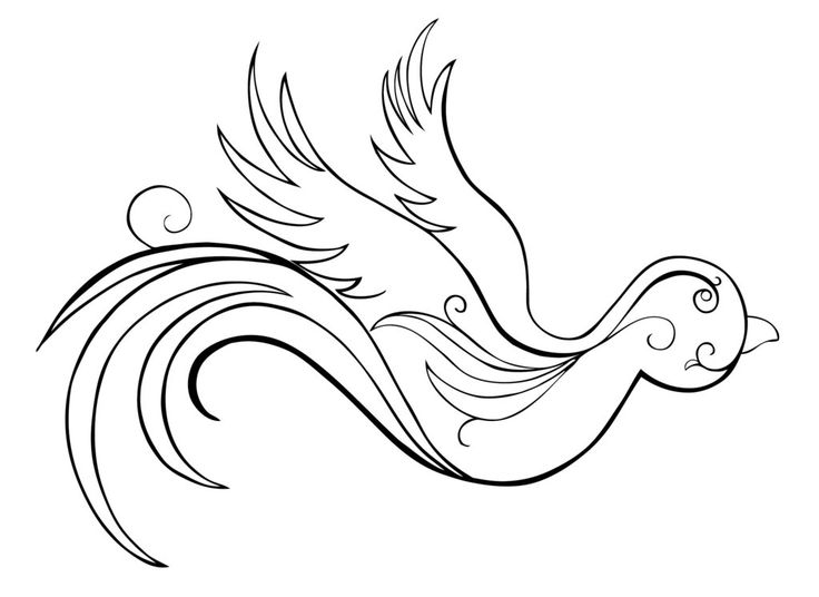 736x536 Sparrow Tattoo Stencil Pictures To Pin