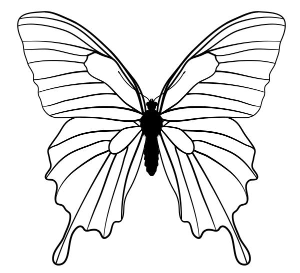 600x547 Drawingbutterfly 5 1 Mountain Blue Own Art