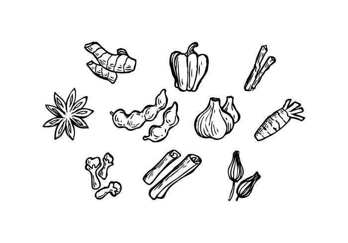 700x490 Free Herbal Spice Icon Vector