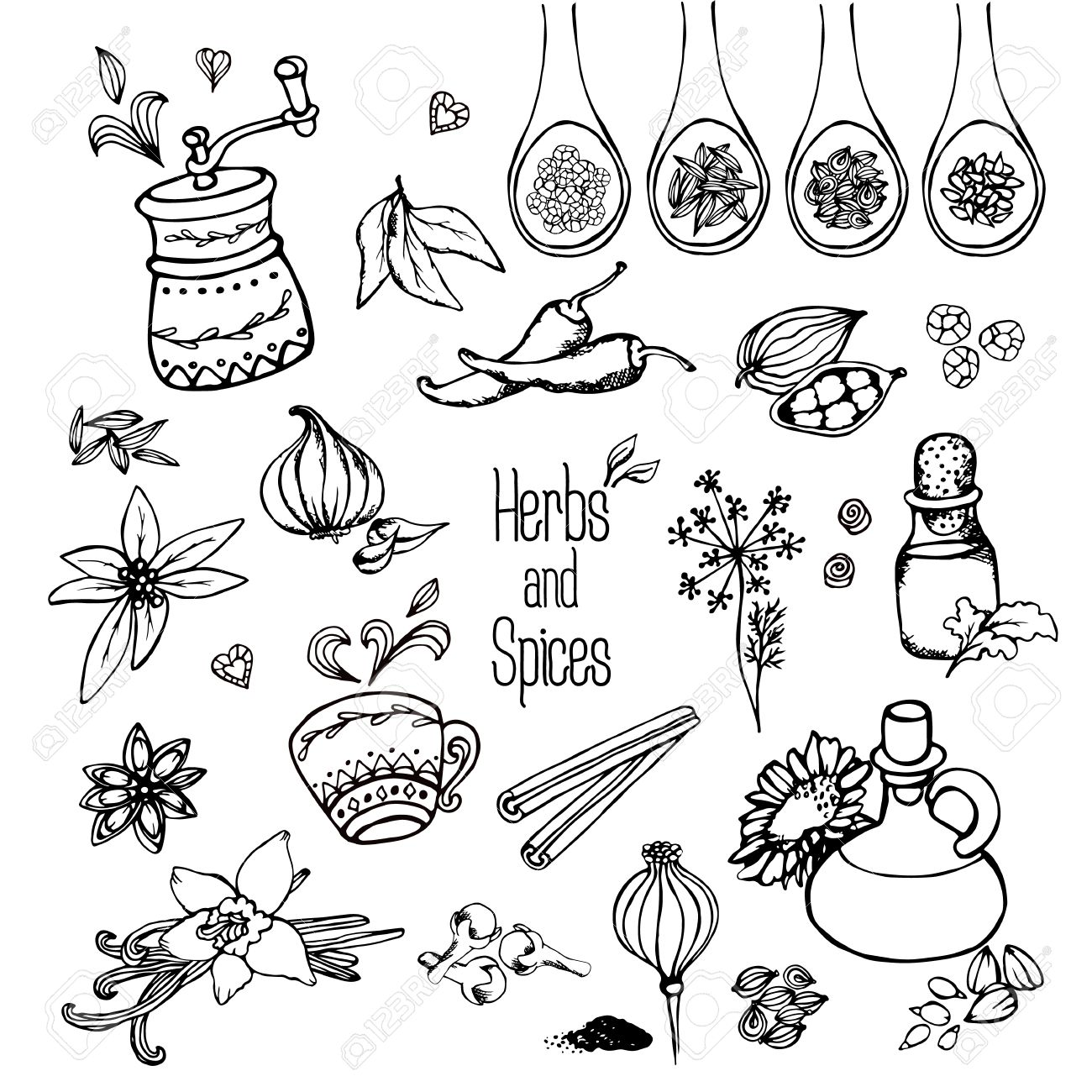 1300x1300 Herbs And Spices, Freehand Drawing Royalty Free Cliparts, Vectors