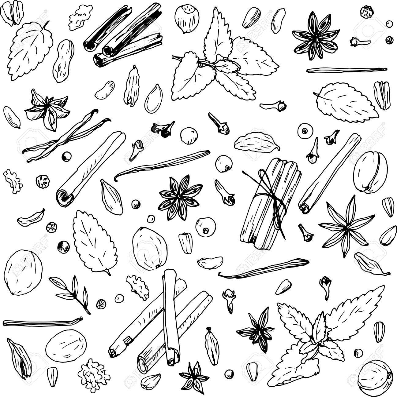 1297x1300 Spices, Vector Food Set, Ink Drawing Vector Elements Royalty Free