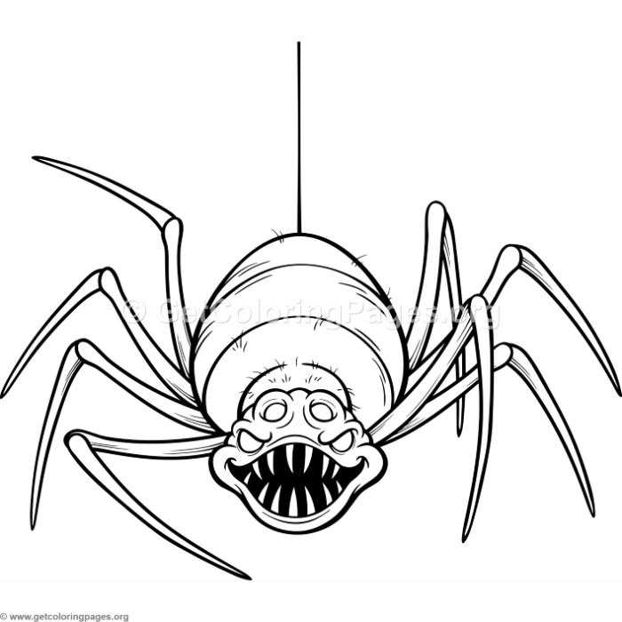 700x700 Scary Spider Coloring Pages