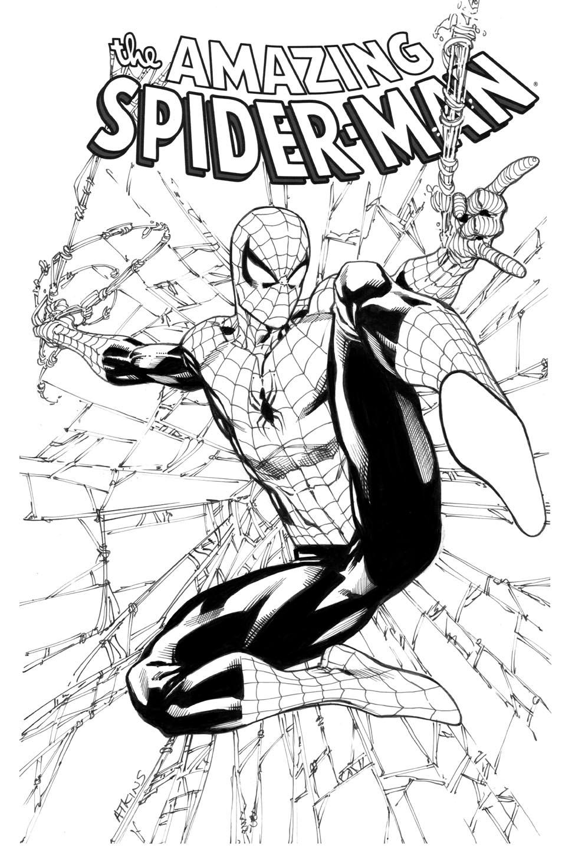 975x1448 Spider Man 1st Grade Robert Atkins Art