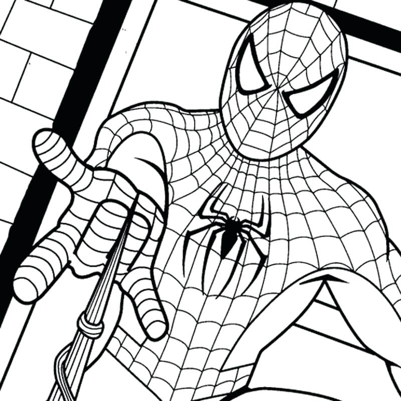 800x800 Flash Coloring Games And Spider Drawing For Kids 681