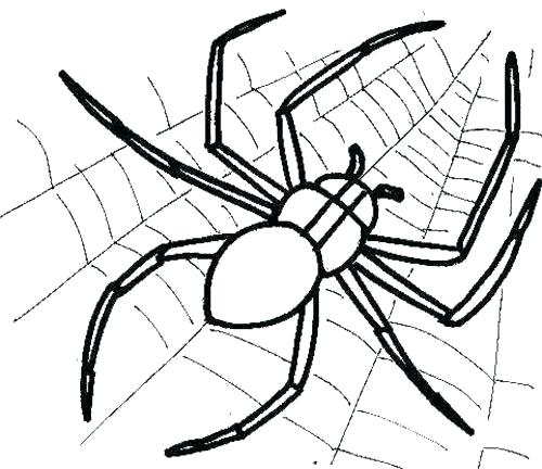 500x432 Lovely Itsy Bitsy Spider Coloring Pages Kids B Page Web And Col