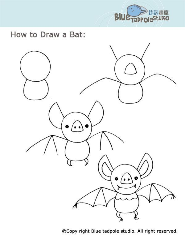 600x776 291 Best Draw Bugs Worms Snails Frogs Turtlesn More S By S Images