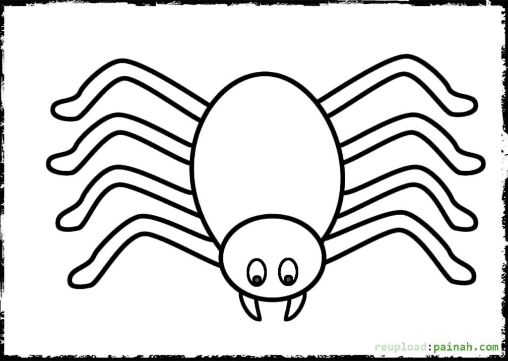1024x728 Drawn Spider Simple Many Interesting Cliparts