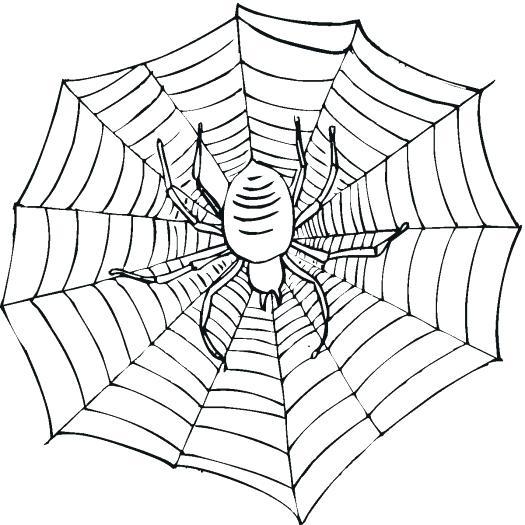 525x525 Preschool Spider Web Coloring Page Coloring