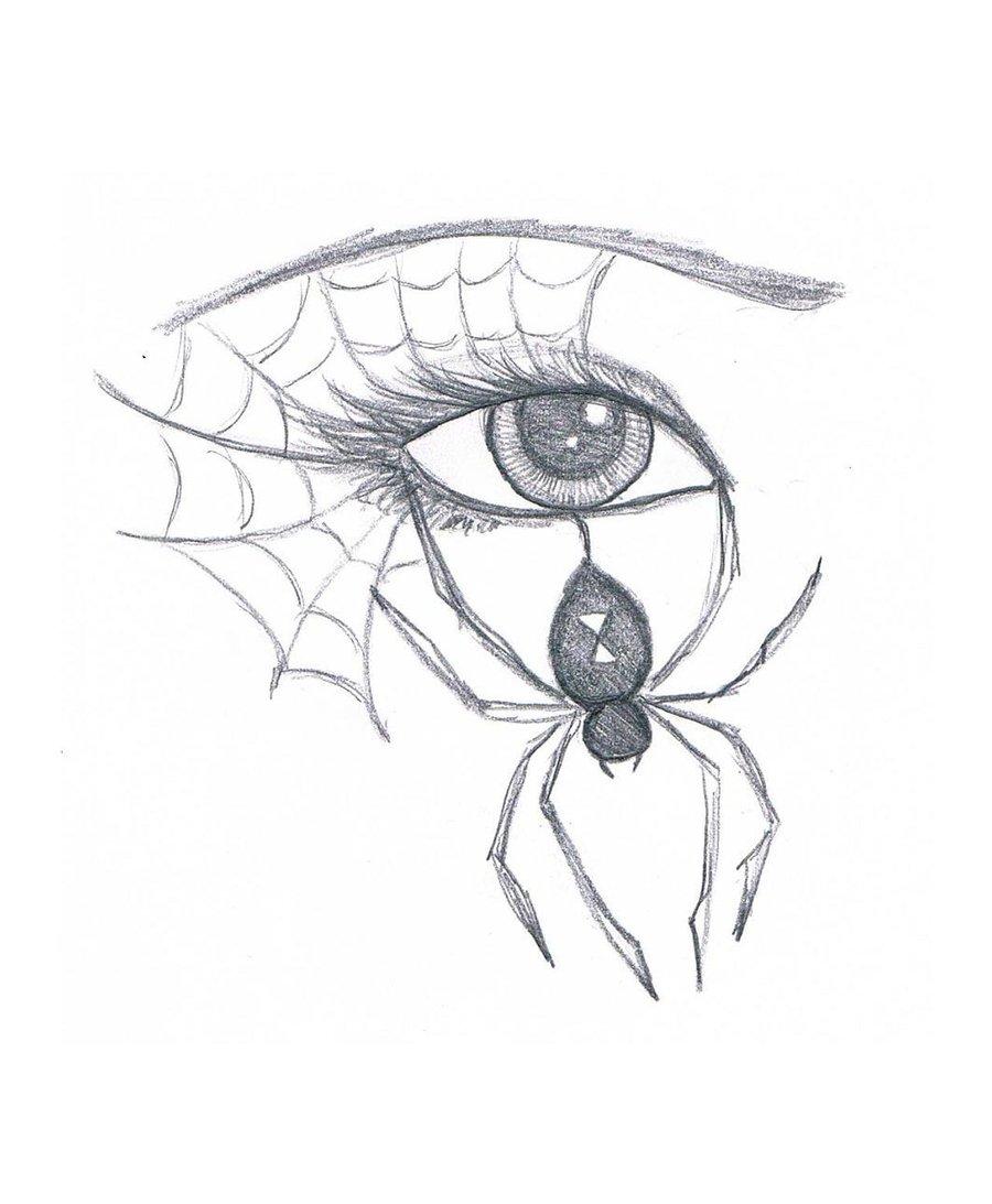900x1093 Spider Eye By Marissawalker