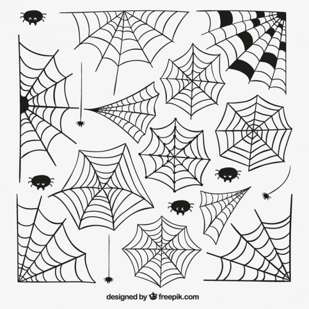 626x626 Spider Web Vectors, Photos And Psd Files Free Download