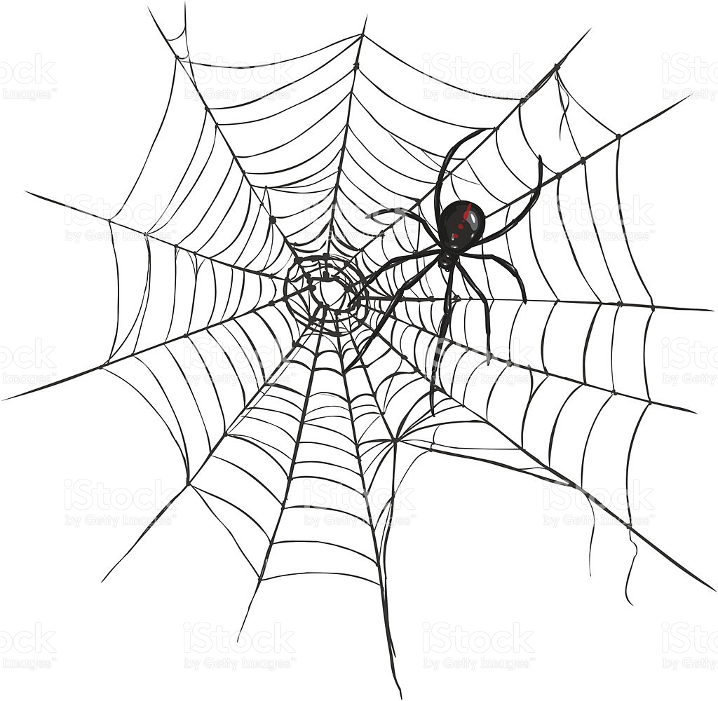 1024x1000 Vector Black Widow Spider On Spider's Web. Royalty Free Stock
