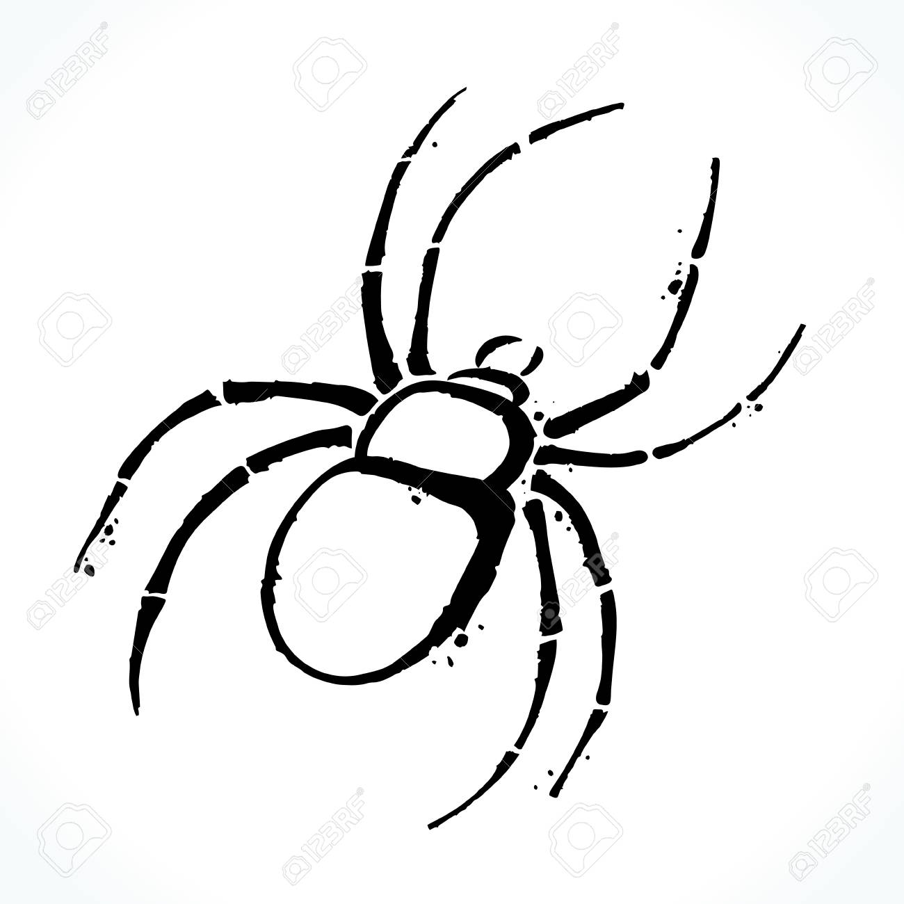 1300x1300 Hand Drawn Spider Isolated On White Background Royalty Free