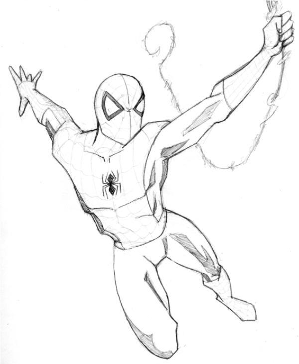 600x729 Spiderman Pencil Sketch By Liberate Tutemet