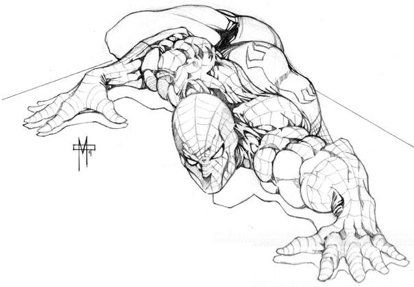 604x419 Spiderman Pencil Sketch By Cmdumestre