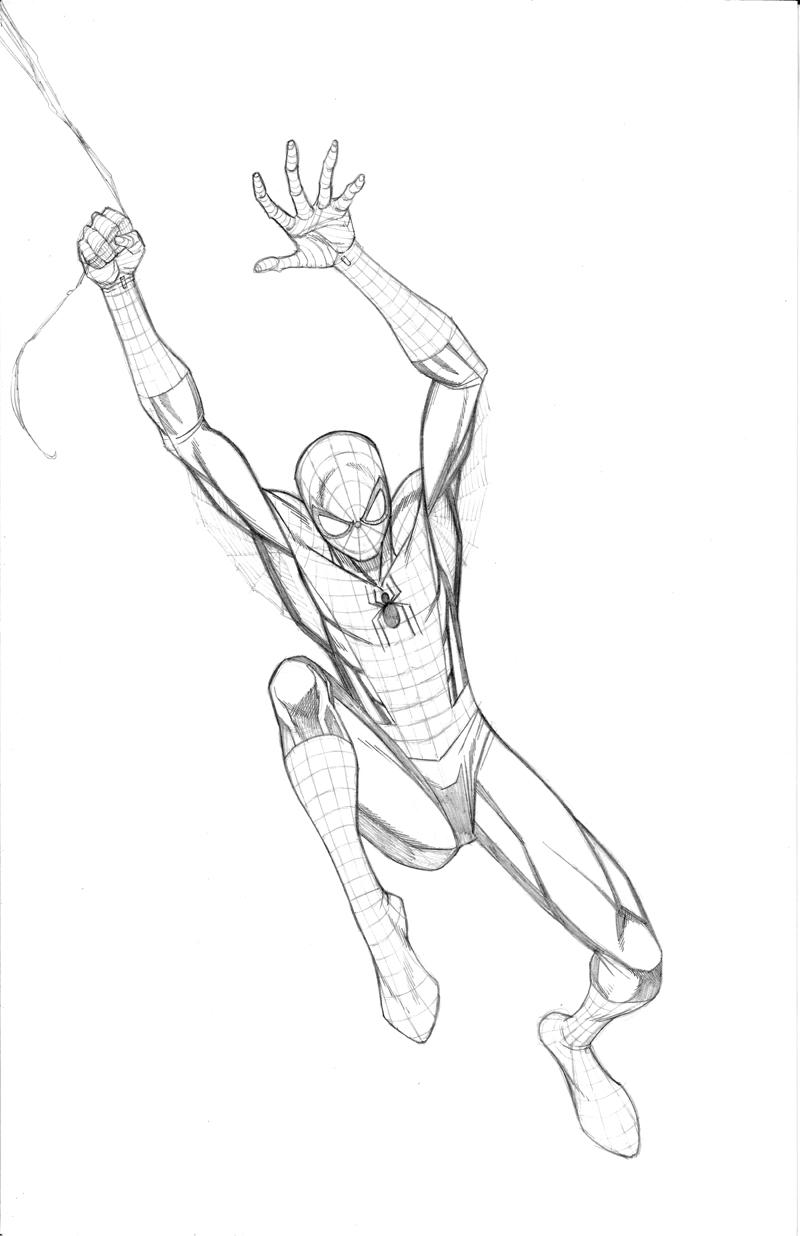 800x1236 Ultimate Spiderman Drawings In Pencil