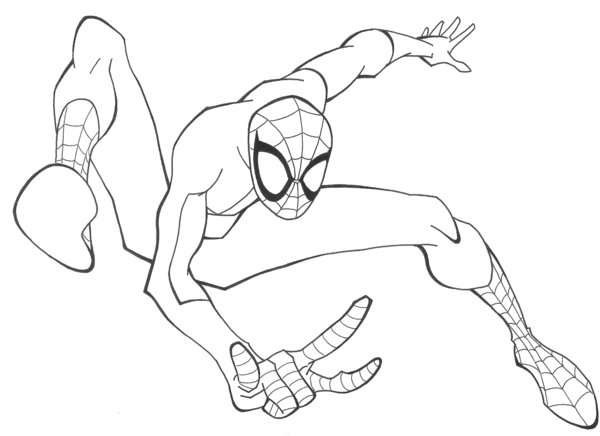 600x436 Spiderman Sketch By Rickybob