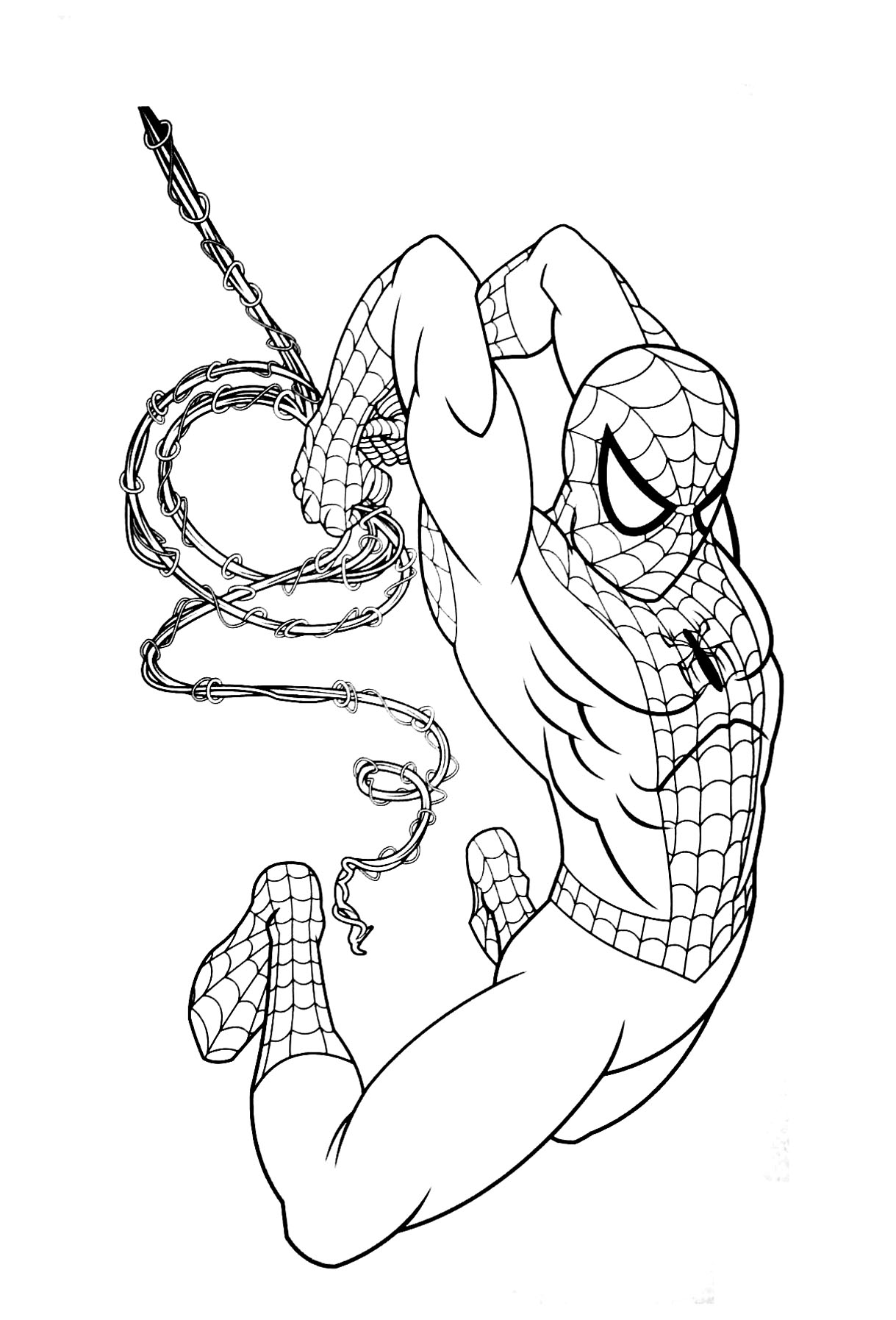 1219x1795 Spiderman Coloring Pages Hanging