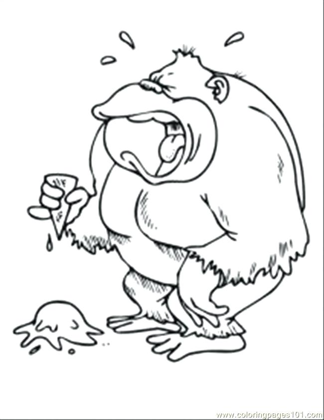 650x843 Spider Monkey Coloring Pages Spider Monkey Coloring Pages Animal