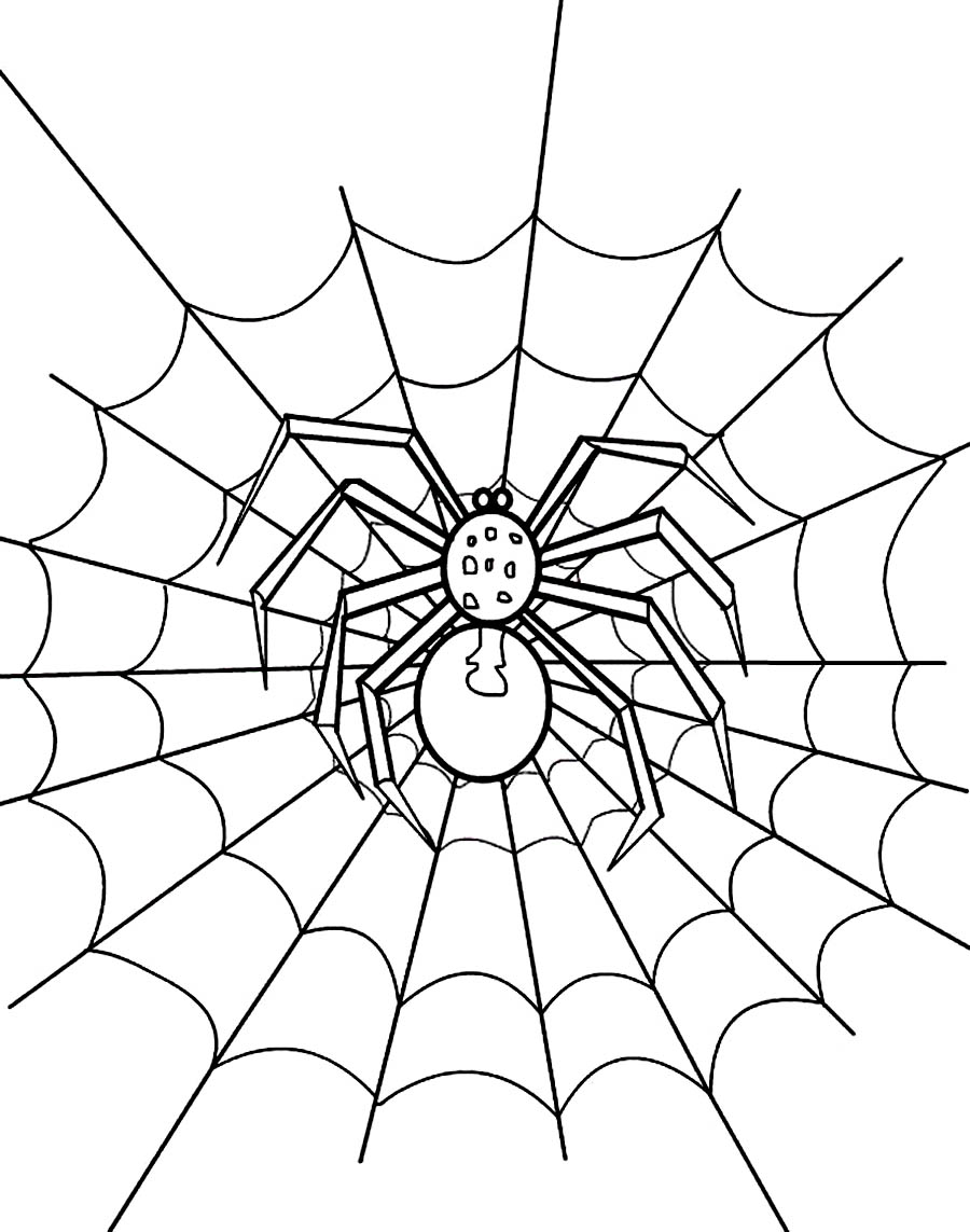 900x1143 Printable Spider Web Coloring Pages Coloring Me