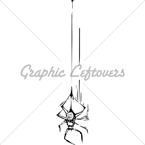500x500 Spider Hanging From Web Drawing