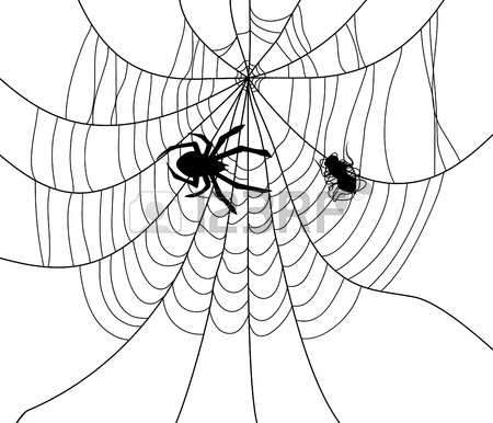 450x386 Vector Black And White Drawing Of Poisonous Tarantula Spider