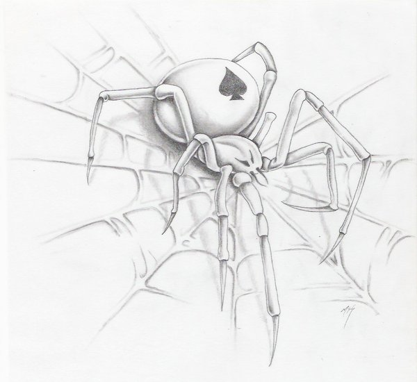 600x550 Spider A Web By Markfellows