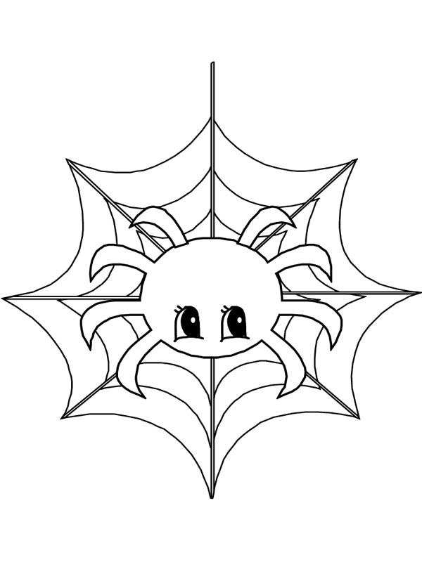 600x800 Cute Little Spider On Spider Web Coloring Page