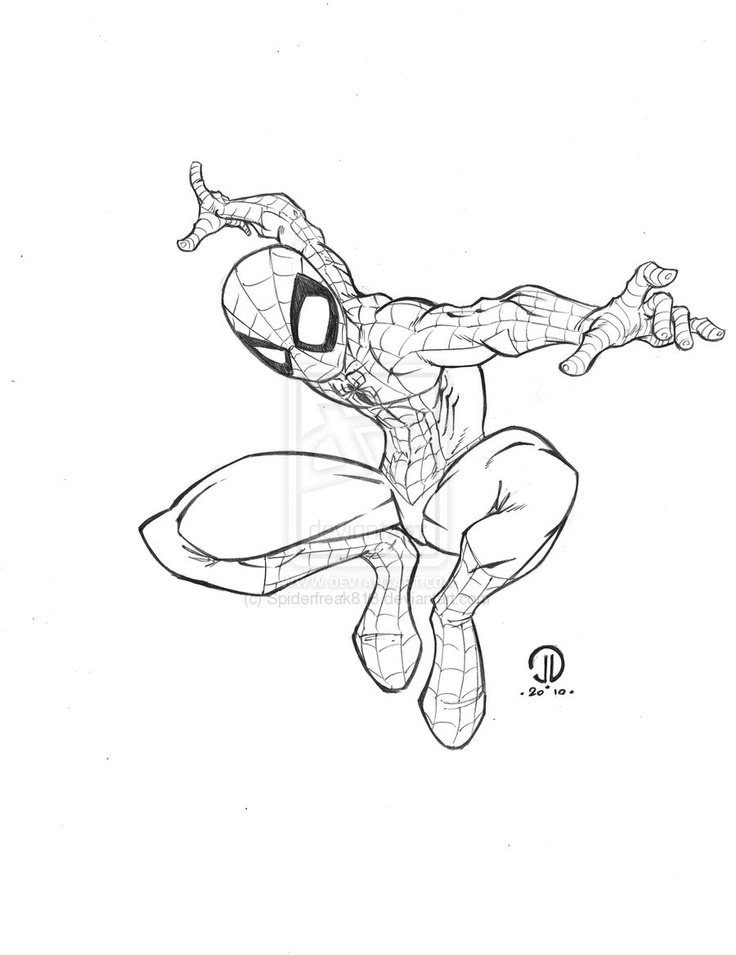 Spider Pencil Drawing