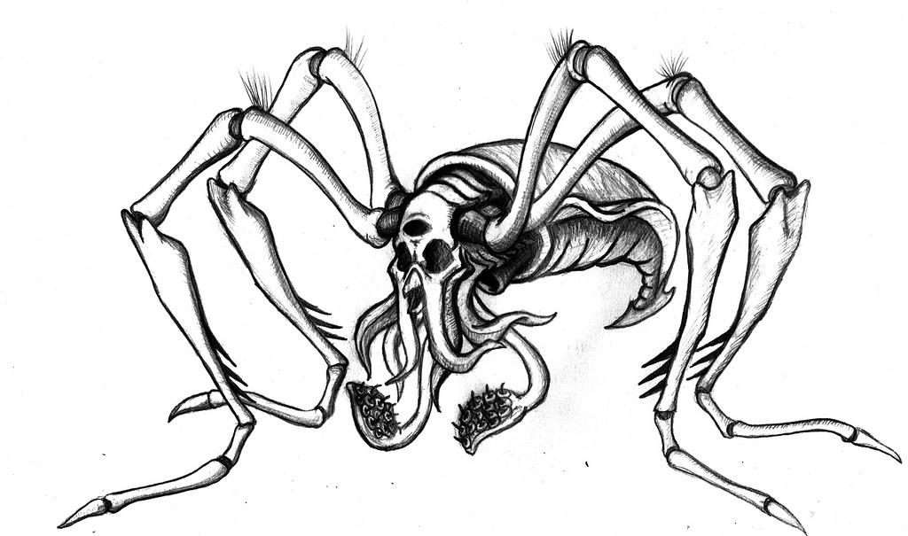 Spider Pencil Drawing At Getdrawings