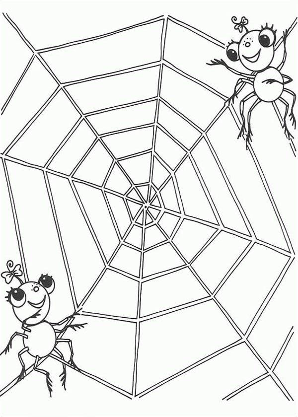 600x840 A Spider Couple On The Edge Of Spider Web Coloring Page Color Luna