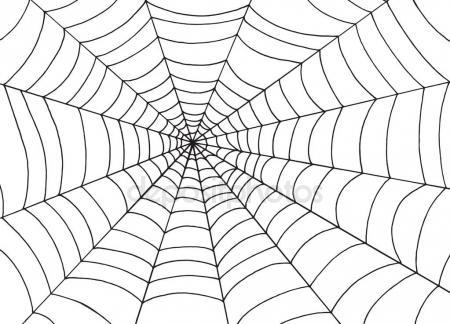 450x324 White Spider Web On Black Background, Doodle Sketch Vector Art