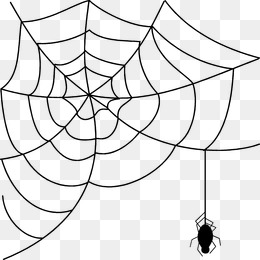 260x260 Cartoon Spider Web Png Images Vectors And Psd Files Free
