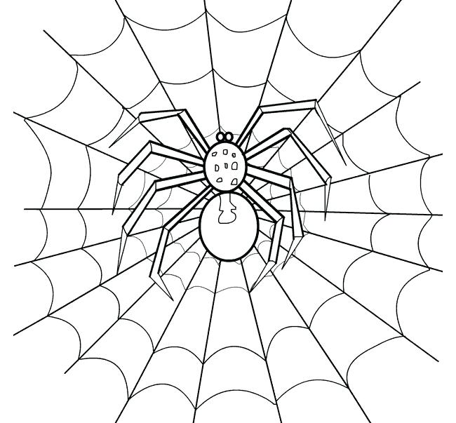 650x603 How To Draw A Spider Web Make A Spider Web Drawing Colour