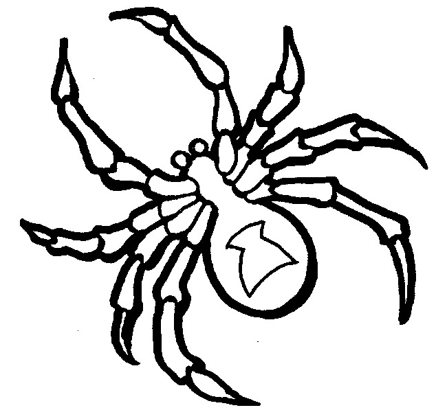 650x597 Spider Shape Template