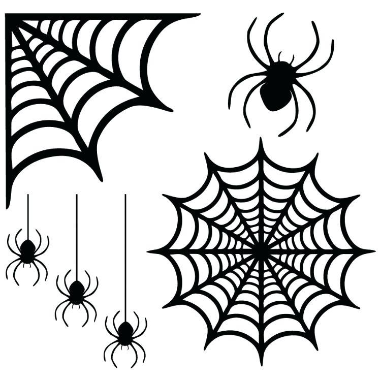 750x750 Halloween Spider Web Ladyroom.club