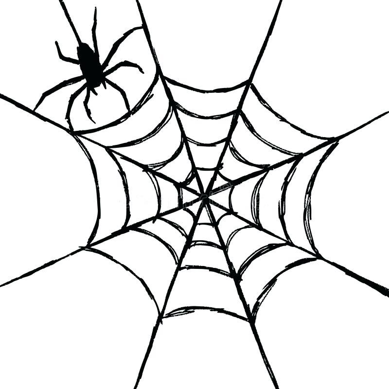 800x800 How To Draw A Spider Web Abundantlifestyle.club