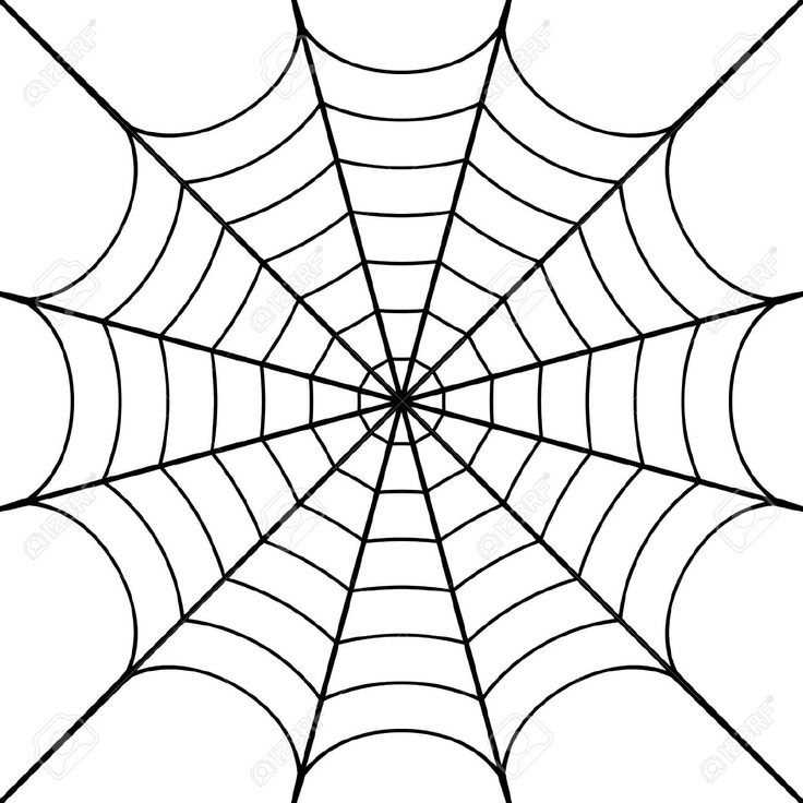 Spider Webs Drawing