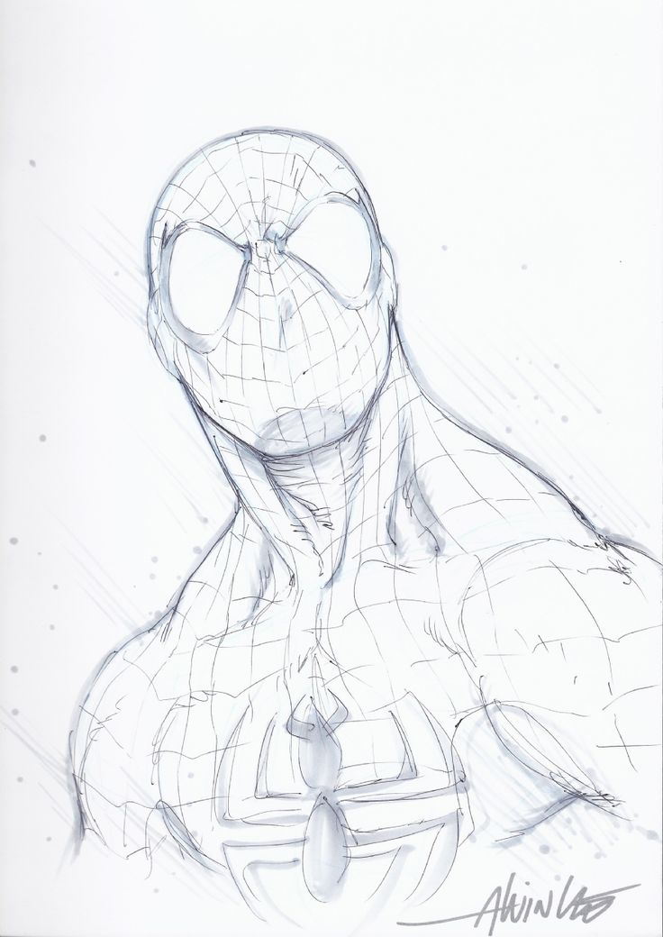 Spiderman Costume Drawing