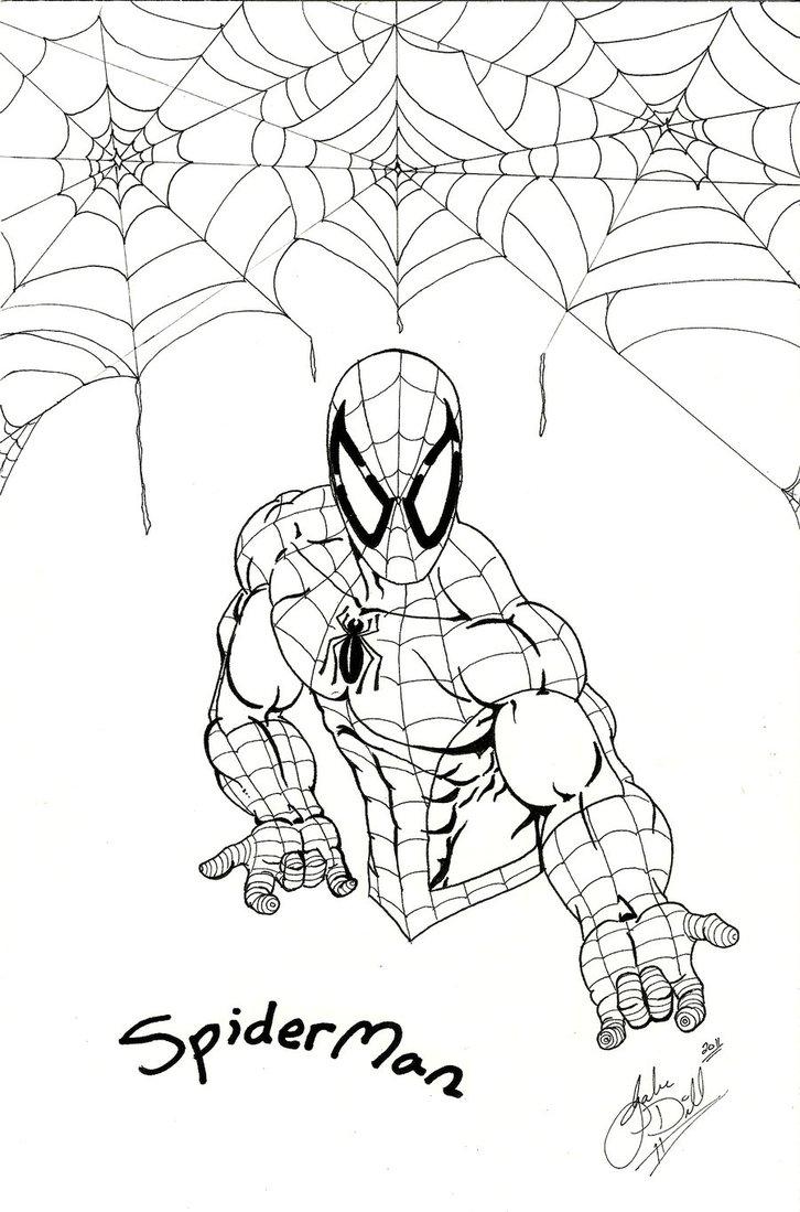 726x1099 Spiderman Sketch