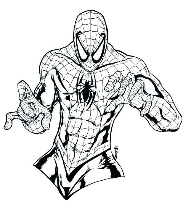 618x707 Spiderman Free Coloring Pages Synthesis.site