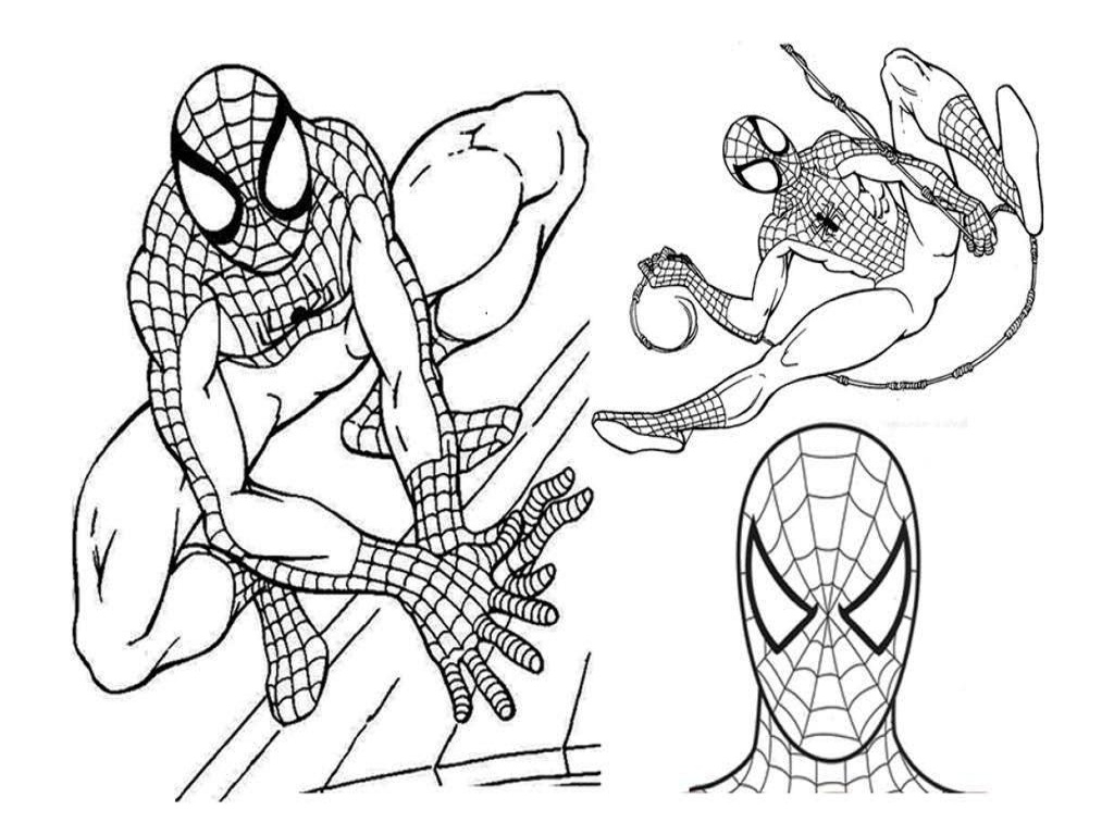 1024x768 Coloring Book Pages Of Spiderman Line Drawings Spiderman Coloring