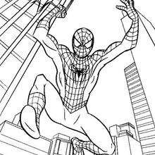 220x220 Spiderman Transformation Coloring Pages