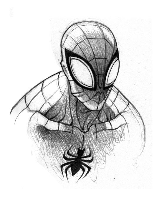 Spiderman Easy Drawing